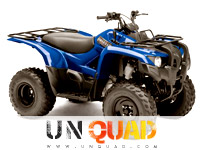 Quad Yamaha Grizzly 300