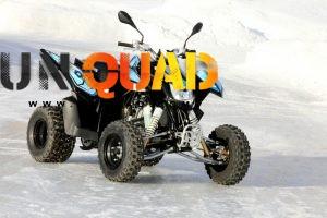Quad Goes G 300 S