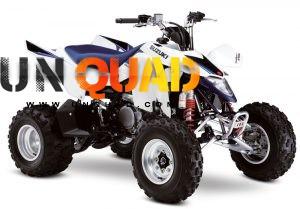 Quad Suzuki