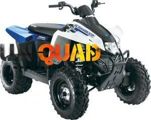 Quad Polaris