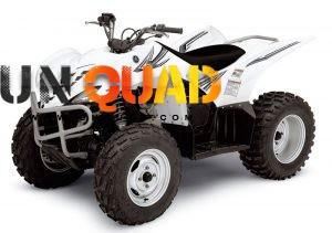 Quad Yamaha